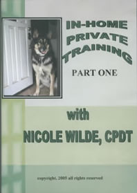 In-Home Private Training DVD