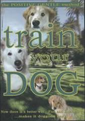 Train Your Dog DVD
